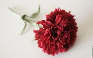Цветы из ткани своими руками: 5 инструментов, 10 этапов изготовления, видео