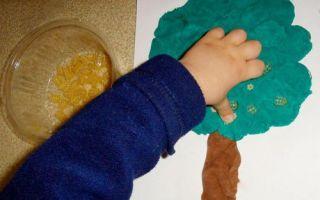 Денежное дерево из монет, купюр и фисташек своими руками