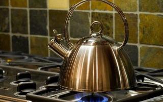 Лучшие чайники для газовой плиты – рейтинг 2021 года